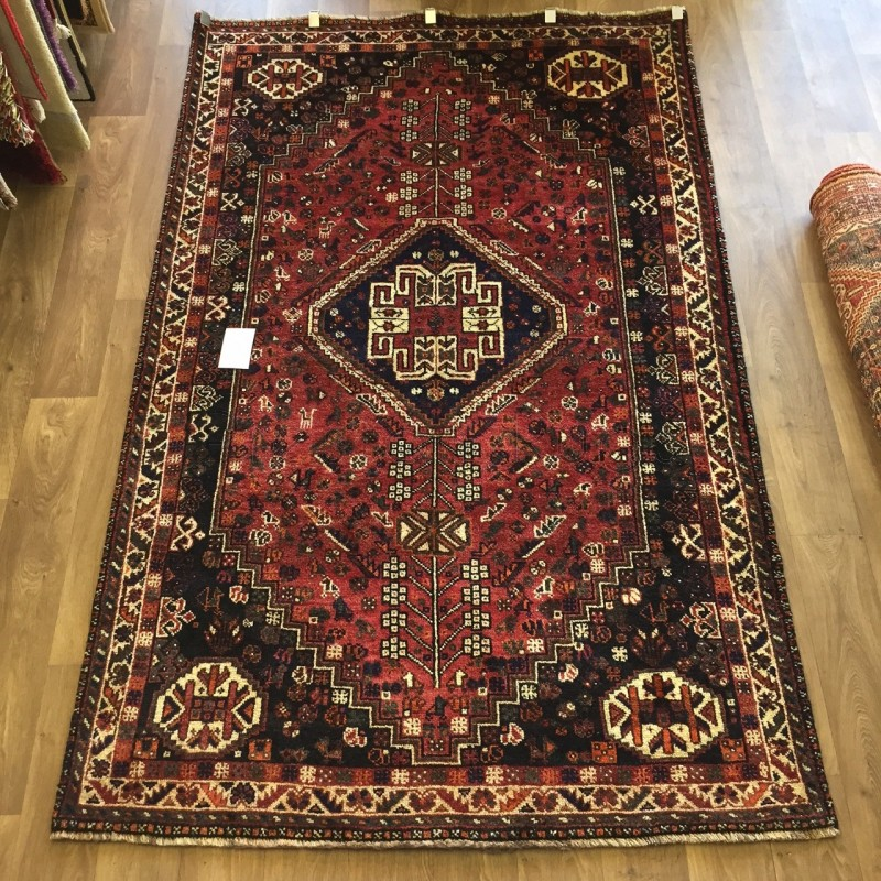 Persian Shiraz Hand Knotted Tribal Wool Rug 156 X 249 Cm