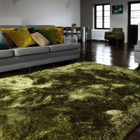 Plush Shaggy Rug - Green